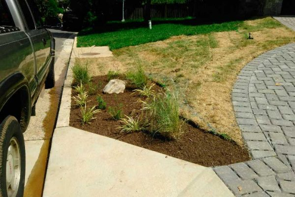 Landscaping 6