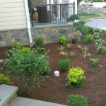 Landscaping 8